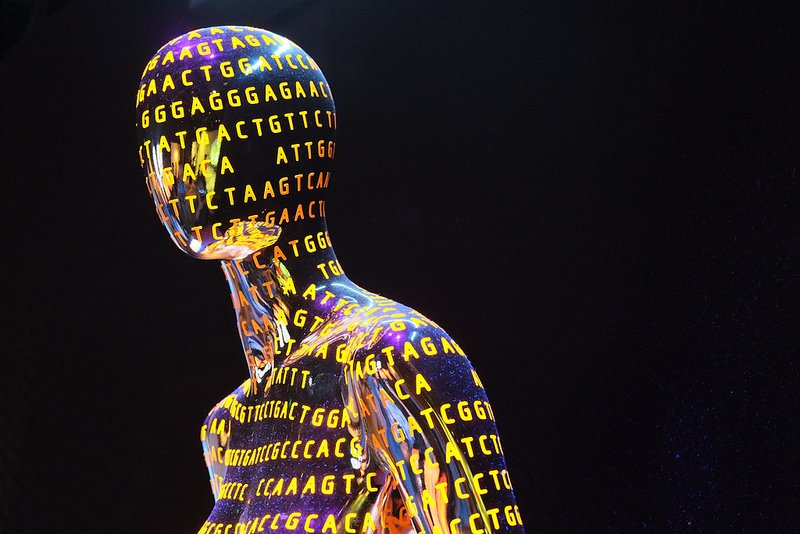 9251502638 566318d695 c Are we on the verge of an era of personalised medicine? Ten years on from the Human Genome Project.