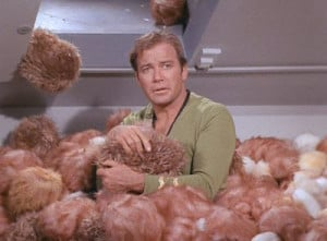 TRIBBLES. Star Trek: The Original Series. Desilu productions. Still taken from Wikimedia Commons.